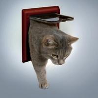 ТРИКСИ Дверца для кошки 16,5х17,4см, с2 функциями коричневая