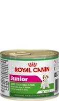 Royal Canin Junior Mousse