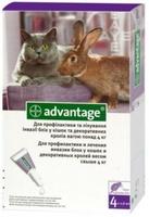 Advantage 80 для кошек более 4кг, 1 пип.