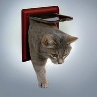ТРИКСИ Дверца для кошки 16,5х17,4см, с4 функциями коричн.